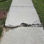 Sidewalk, Walkway - Repair at 62 Royal Oak Cv NW