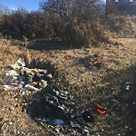 Garbage in a park at 2015 26 ST SE