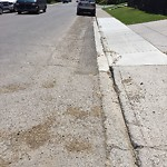 On-Street Cycling Lane - Cleaning at 2003 41 AV SW