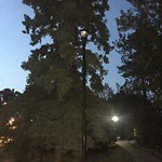 ... Park Lighting Maintenance at 827 MEMORIAL DR NW & Calgary 311 azcodes.com