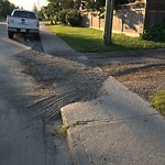 On-Street Cycling Lane - Cleaning at 2814 19 Av SW