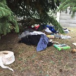 Garbage in a park at 10302 14 ST SW