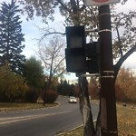Traffic or Pedestrian Light Repair at 608 Riverdale Ave SW