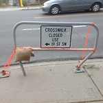 Sign on Street/Lane/Sidewalk-Repair/Replace at 1924 17 AV SW