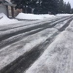 Snow on Road at 44 WOODFERN DR SW