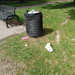 Garbage in a park at 127 HAMPTONS GV NW