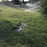 Irrigation Concern - Within a Park at 4207 14A ST SW