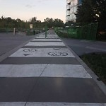 Shared Pedestrian and Cycling Path at 800 1 AV SW