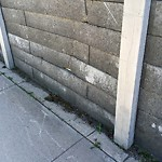 Fence - Noise Barrier - Retaining Wall Repair at 9832 ALBERNI RD SE