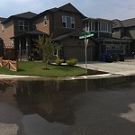 Catch Basin Flooding / Pooling (old) at 183 COUGAR RIDGE MR SW
