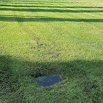 Irrigation Concern - Within a Park at 99 Christie Point SW Unit 67, Calgary, AB T3H 3K8, Canada