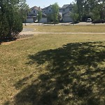 Irrigation Concern - Within a Park at 167 TUSCANY HILLS CI NW