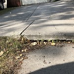 Sidewalk, Walkway - Repair at 146 Ave SE Southeast Calgary Calgary