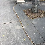 Sidewalk - Walkway Repair at 139 17 AV SW