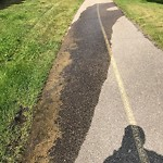 Irrigation Concern - Within a Park at 153 PATTERSON BV SW