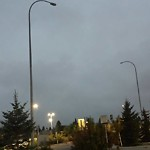 Streetlight - Not Working Properly at 8211 CROWCHILD TR NW