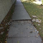 Sidewalk - Walkway Repair at 4211 37 ST SW