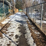 Snow on Pathway or City-maintained Sidewalk at 2904 BURGESS DR NW