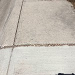 Sidewalk - Walkway Repair at 7516 7 ST NW