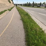 Mowing - Major Roadway 60+km/h & Damage to any City Boulevard at 11613 Harvest Hills Bv N