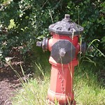 Fire Hydrant Concerns at 83 Haysboro Cr SW