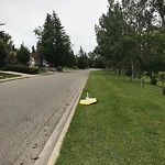 Sign on Street, Lane, Sidewalk - Repair or Replace at 3335 Collingwood Dr NW