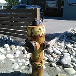 Fire Hydrant Concerns at 4704 Bowness Rd NW