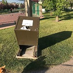 Garbage in a Park at 824 Royal Co NW