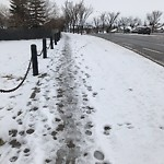 Snow on Pathway or City-maintained Sidewalk at 202 Somervale Pt SW