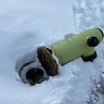 Fire Hydrant Concerns at 12 Brampton Crescent SW Southwest Calgary