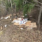Garbage in a Park at 3440 Spruce Dr SW