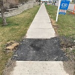 Sidewalk, Walkway - Repair at 82 Arbour Lake Rd NW