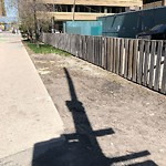 Sidewalk, Walkway - Repair at 559 4 Av SW