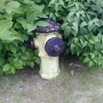 Fire Hydrant Concerns at 8206 Flint Rd SE