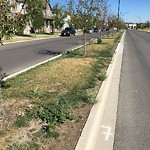 Mowing - Residential Roadway - up to 50km/h at 10562 Cityscape Dr NE