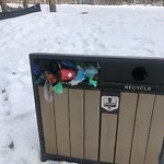 Garbage in a Park at 9400 48 Av NW