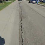 On-Street Cycling Lane - Repair at 243 Bracewood Rd SW